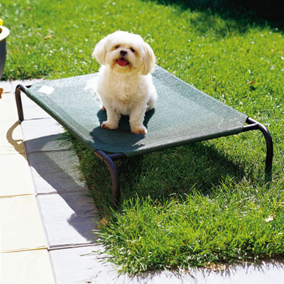 Dog Bed - Small