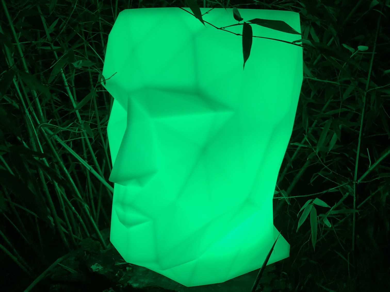 Click to view product details and reviews for Led Head Flower Pot.