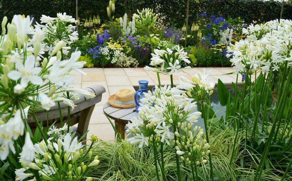 Our Garden Spotlight In September Is