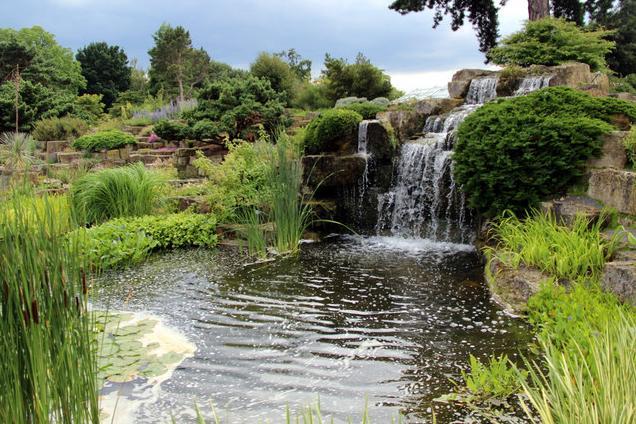 Alpine Rock Gardens Kew Gardens