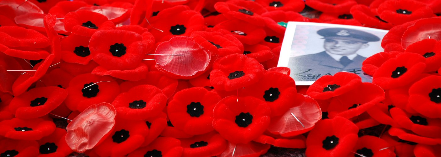 The poppy which marks rememberance day for those who lost their lives in ww1