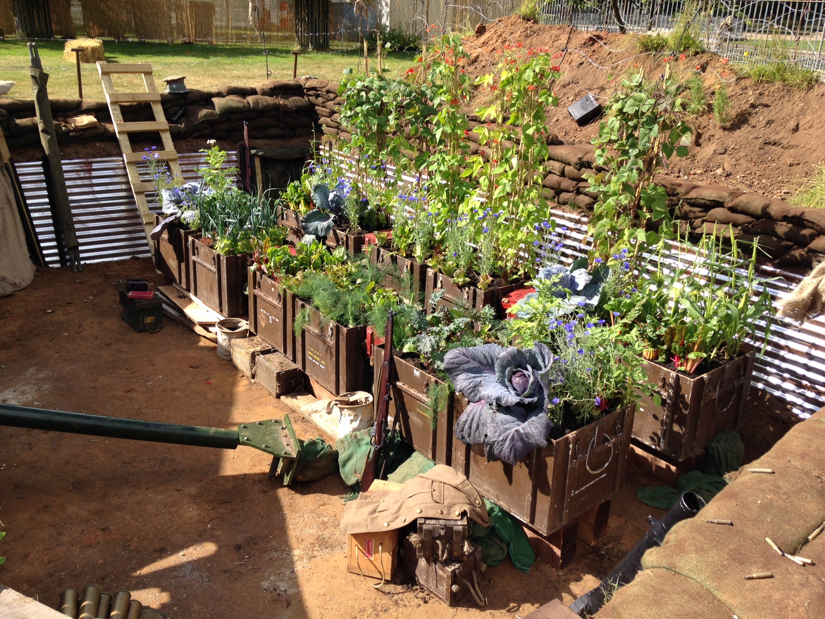 Inside the trenches in the lest we forget garden design