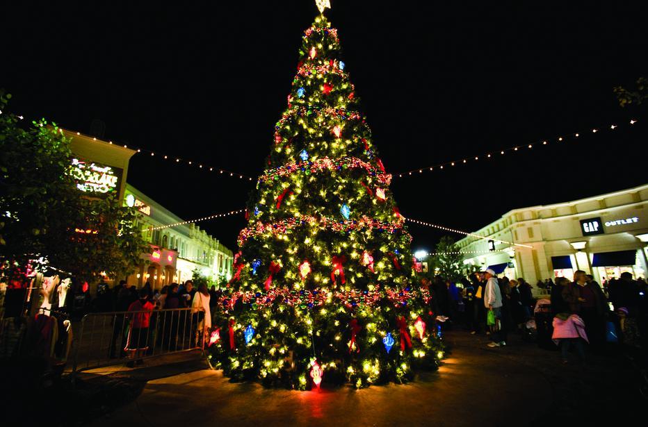 A festive Christmas Tree