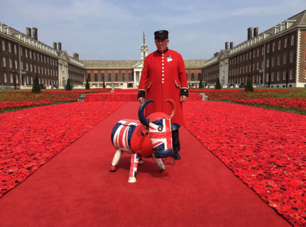 Alfie and Dave in the Poppies at Chelsea Flower Show 2016