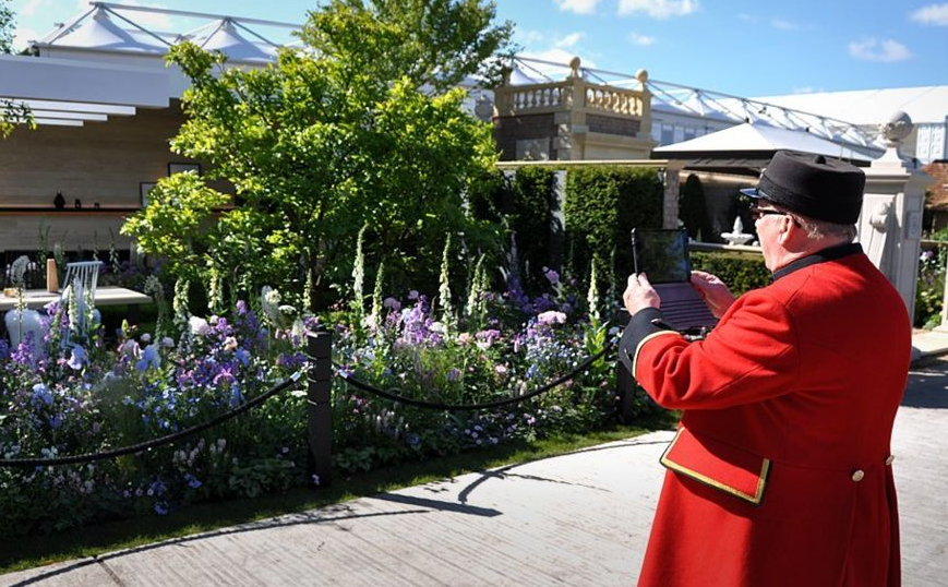 maths, medicine and a little madness at Chelsea Flower Show 2016