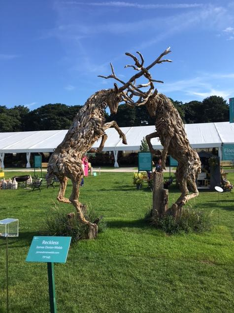 Stags fight it out at Tatton Park