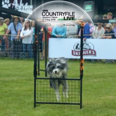BBC Countryfile Live 2016