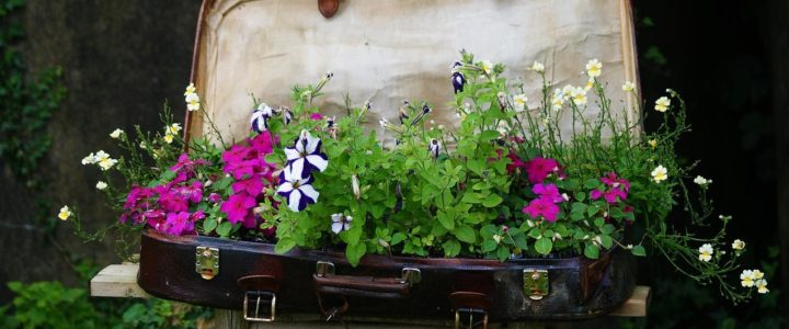 7 Ways for Upcycling Old Garden Furniture …