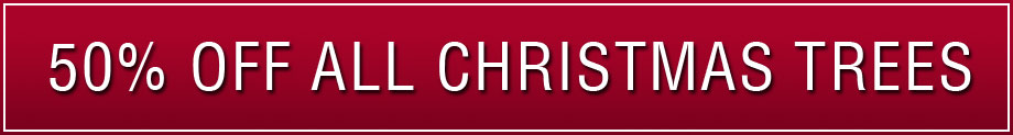 25% Off All Christmas Trees
