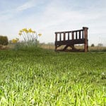 Reclaimed Curved Bench in a field
