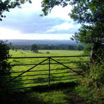Beautiful Devon Countryside