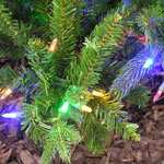 Nine Coloured Light functions on the Dunhill Fir with Dual LED